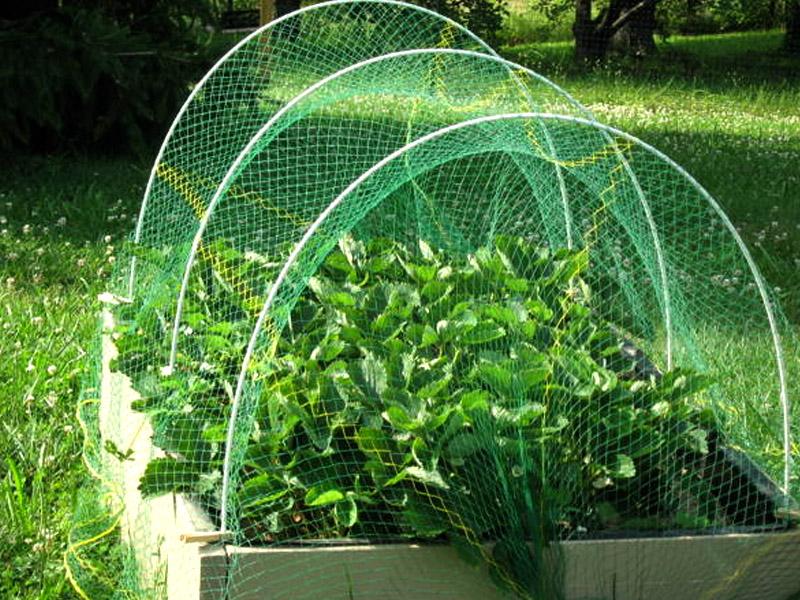 農園芸用保護ネット