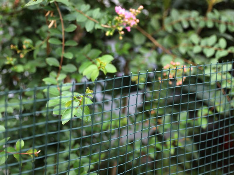 庭園フェンス